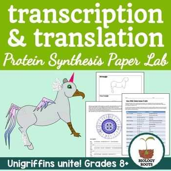 Protein Synthesis Worksheet together with Protein Synthesis Transcription and Translation