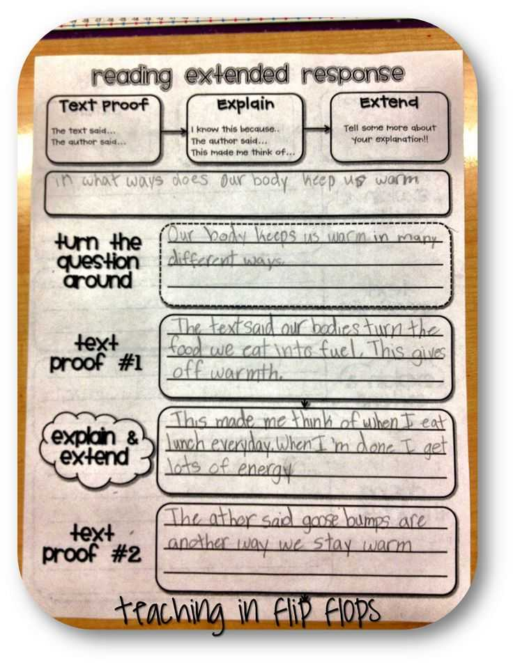 Race Writing Strategy Worksheet and 198 Best Test Prep Fun Images On Pinterest