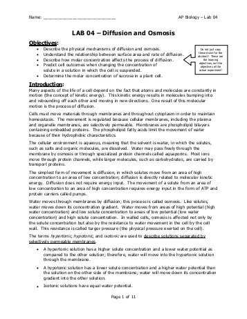 Science 8 Diffusion and Osmosis Worksheet Answers as Well as St Grd Osmosis & Diffusion Homework Pdf