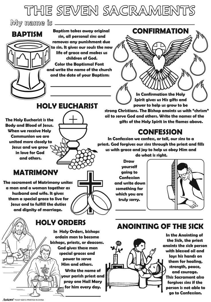 Seven Sacraments Worksheet Also 64 Best the 7 Sacraments Images On Pinterest