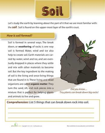 Soil formation Worksheet as Well as soil Position