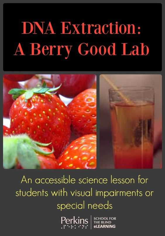 Strawberry Dna Extraction Lab Worksheet Along with This Hands On Accessible Lab Uses Strawberries to Teach Students