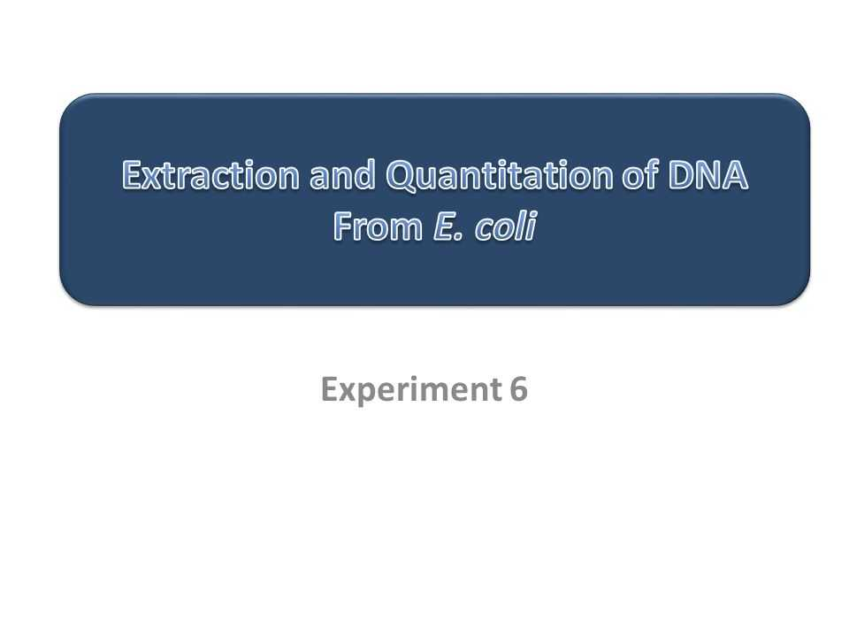 Strawberry Dna Extraction Lab Worksheet as Well as Extraction and Quantitation Of Dna From E Coli Ppt Video Online