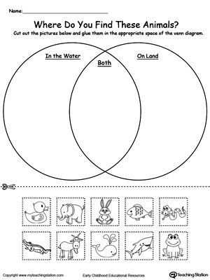 Structure Of the Earth Worksheet Also Year 1 Science Structure Of Animals Venn Diagram Google Search