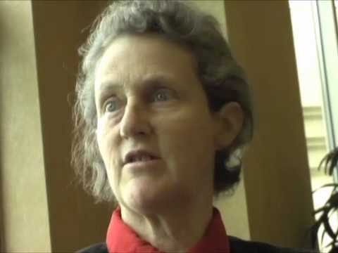Temple Grandin Movie Worksheet Answers with 86 Best Temple Grandin Images On Pinterest