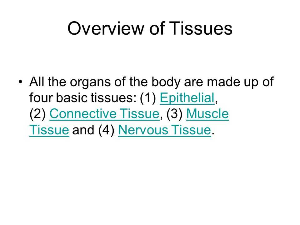 Tissue Worksheet Section A Intro to Histology Also Histology the Study Of Tissues Overview Of Tissues All the organs