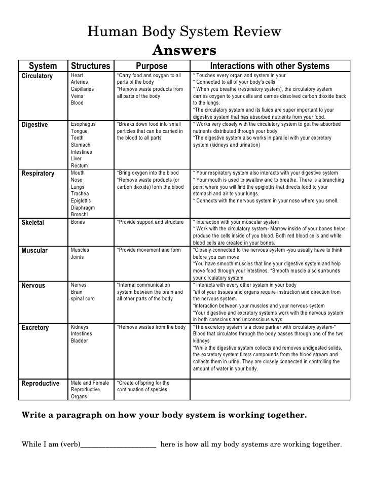 Body Image Worksheets Along with How the Circulatory System Works Worksheet Answers aslitherair
