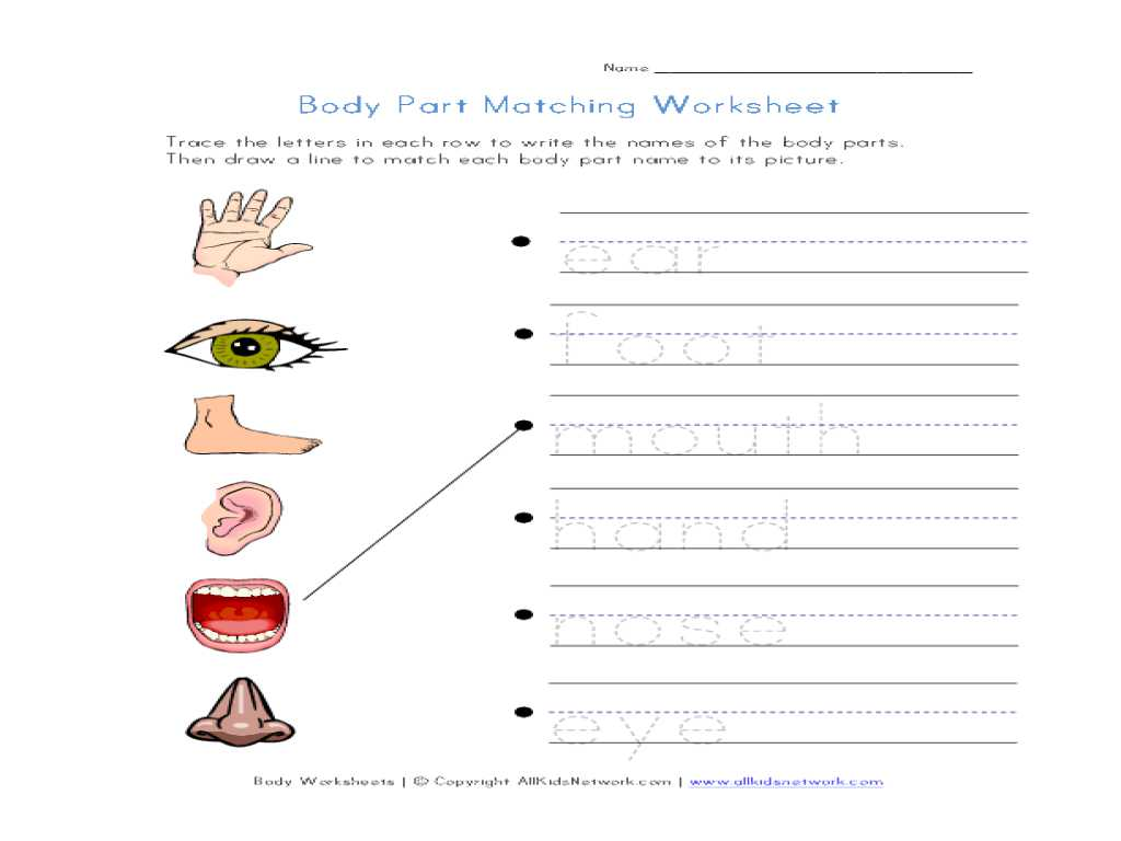 Cartoon Analysis Worksheet Answers and Free Printable Body Parts Matching Worksheet Goodsnyc