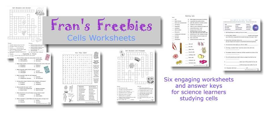 Cell Structure and Processes Worksheet Answers as Well as Worksheets 48 Awesome Cell organelles Worksheet Hi Res Wallpaper