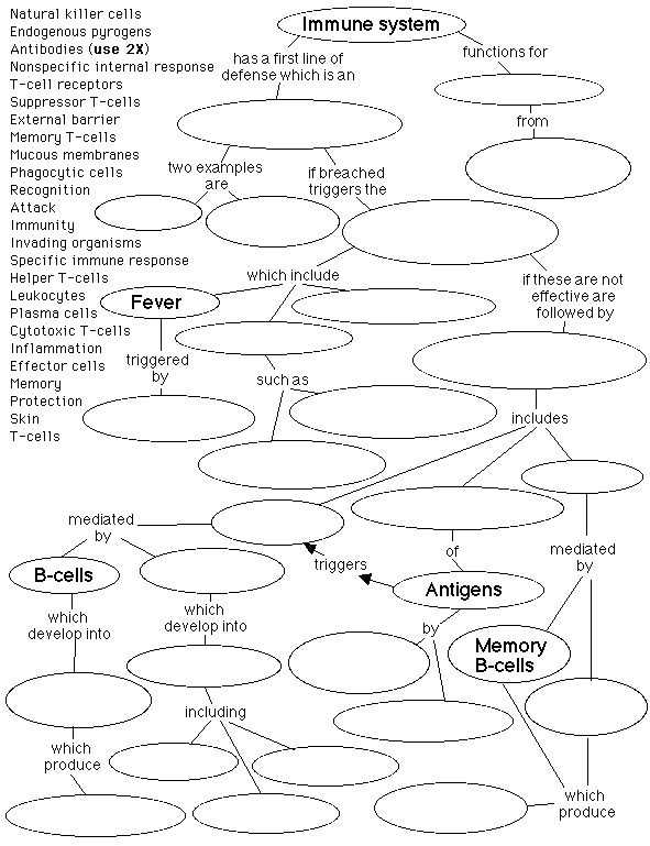Cells Of the Immune System Student Worksheet Answers Along with 240 Best Immunology Images On Pinterest