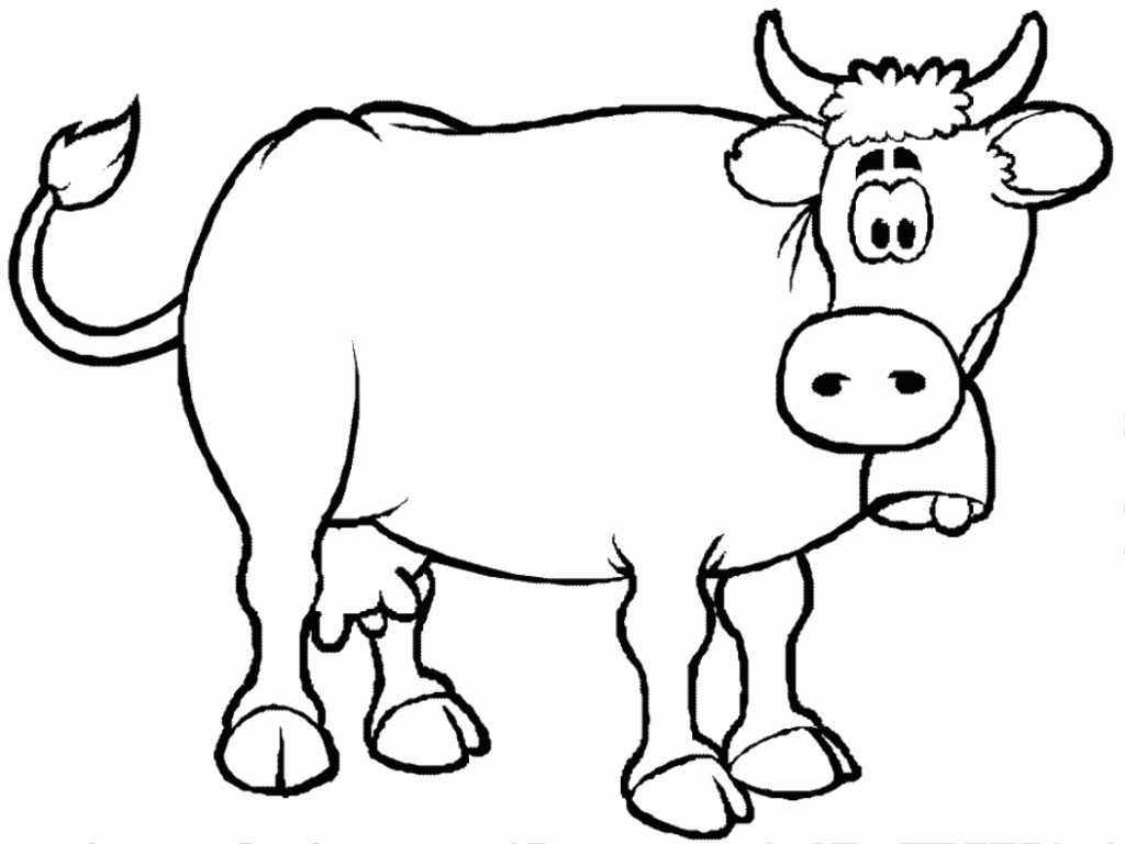 Cow Eye Dissection Worksheet together with Simple Cow Coloring Pages for Kids Coloringsuite