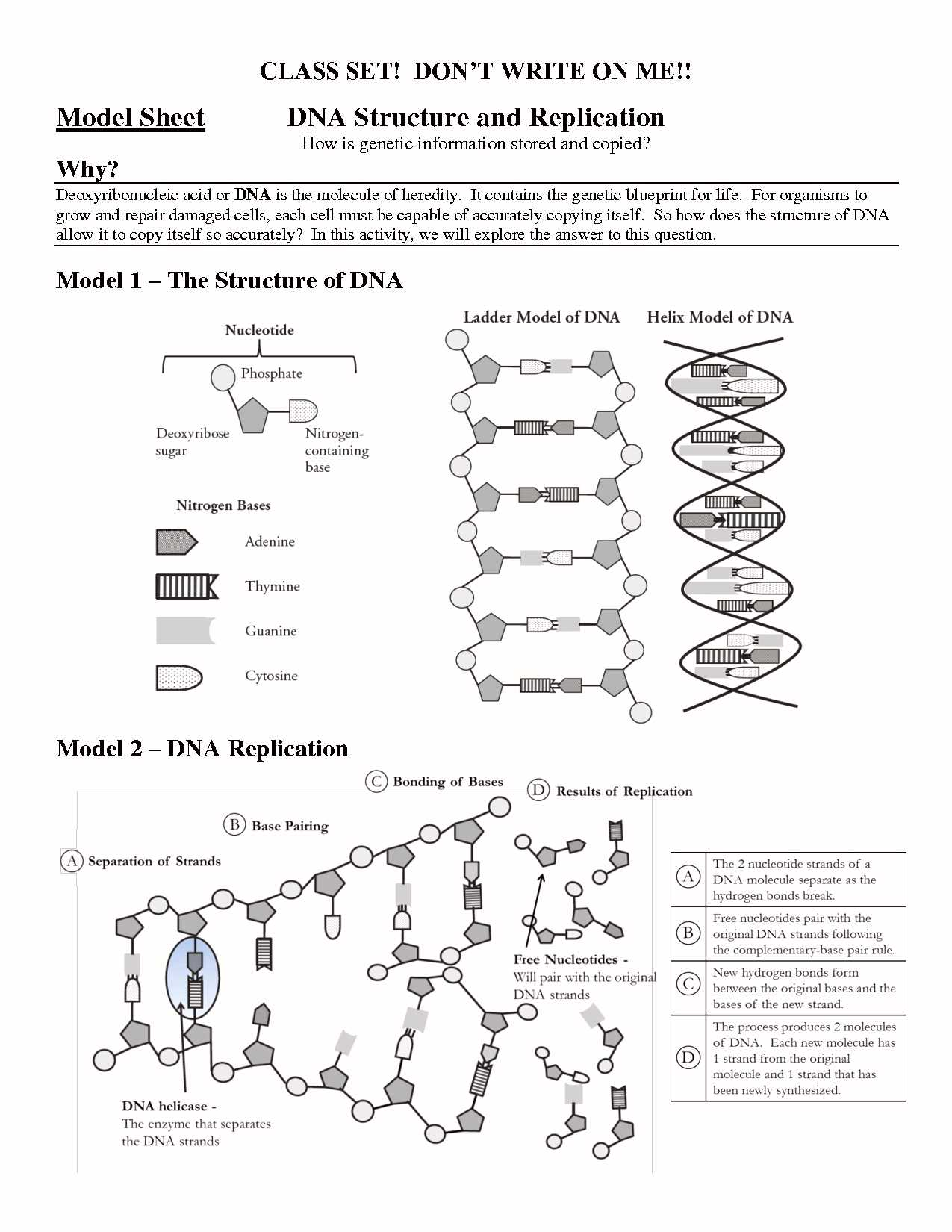 Dna Mutations Practice Worksheet Answer Key as Well as Dna Coloring Transcription and Translation Answer Key Awesome