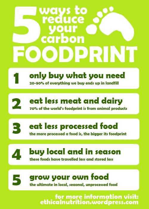 Ecological Footprint Worksheet Along with Reduce Your Carbon Footprint Green Ecological tote Bag
