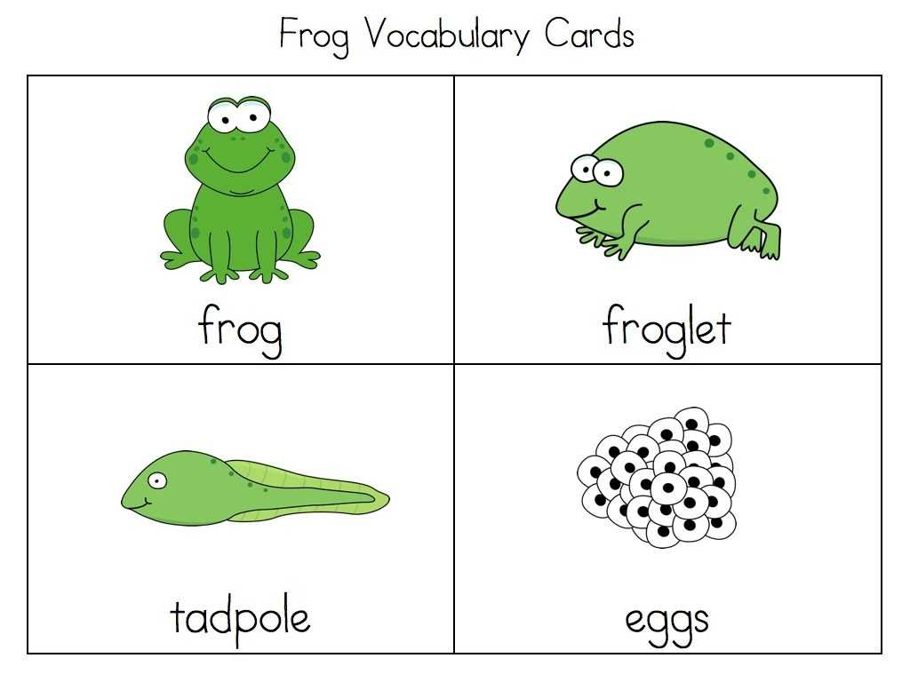 Frog Dissection Worksheet and Life Cycle A Frog for Kindergarten