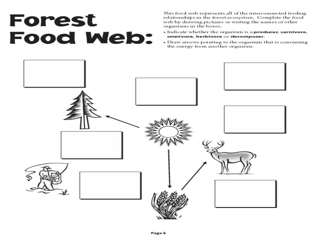Immune System Worksheets for 5th Grade Also Food Chain and Food Web Worksheet Worksheets Tutsstar Thou