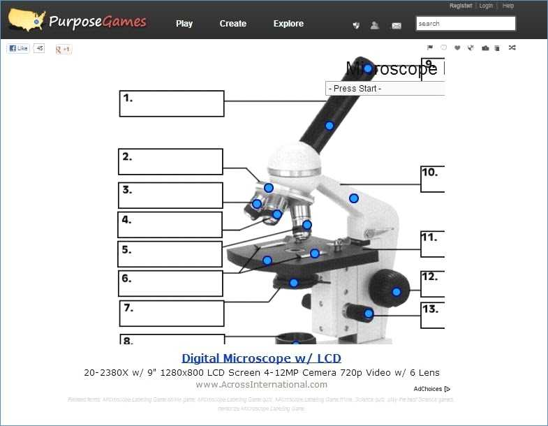 Microscope Parts and Use Worksheet Answers as Well as Microscope Labeling Worksheet