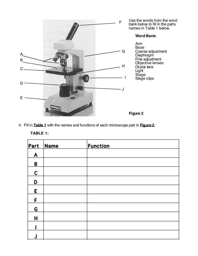 Microscope Parts and Use Worksheet Answers as Well as Using A Pound Light Microscope Lab Answers