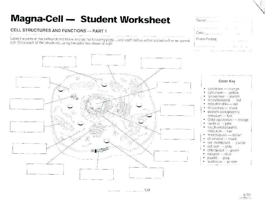 Microscope Parts and Use Worksheet Answers with Parts A Microscope Worksheet Answers Parts Microscope