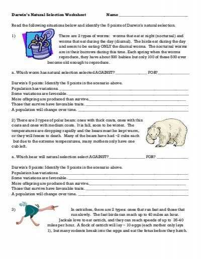 Natural Selection Worksheet as Well as Evolution Worksheet Great Patterns Evolution Worksheet