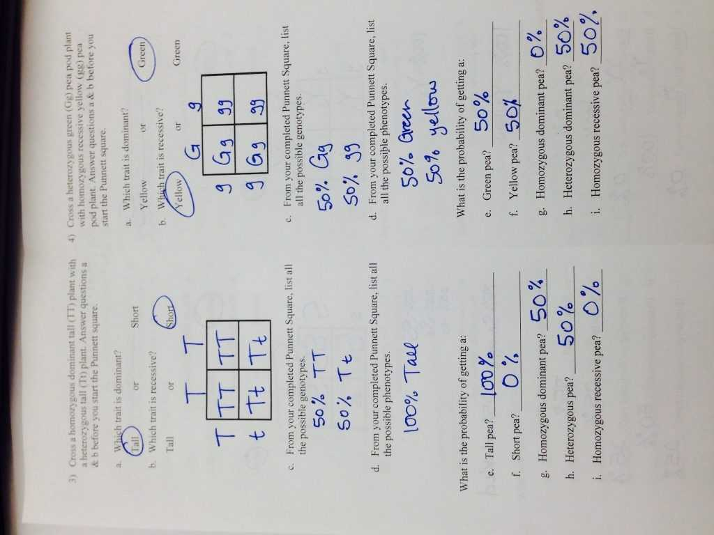 Punnett Square Worksheet 1 Key with Coloring Pages Blood Worksheet Answers New Blood Drawing at