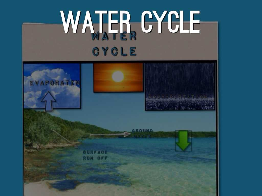 The Water Cycle Worksheet Answer Key or Boilogy Project by Allisonroee
