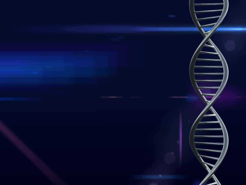 Dna The Double Helix Worksheet Answers Or Genetic