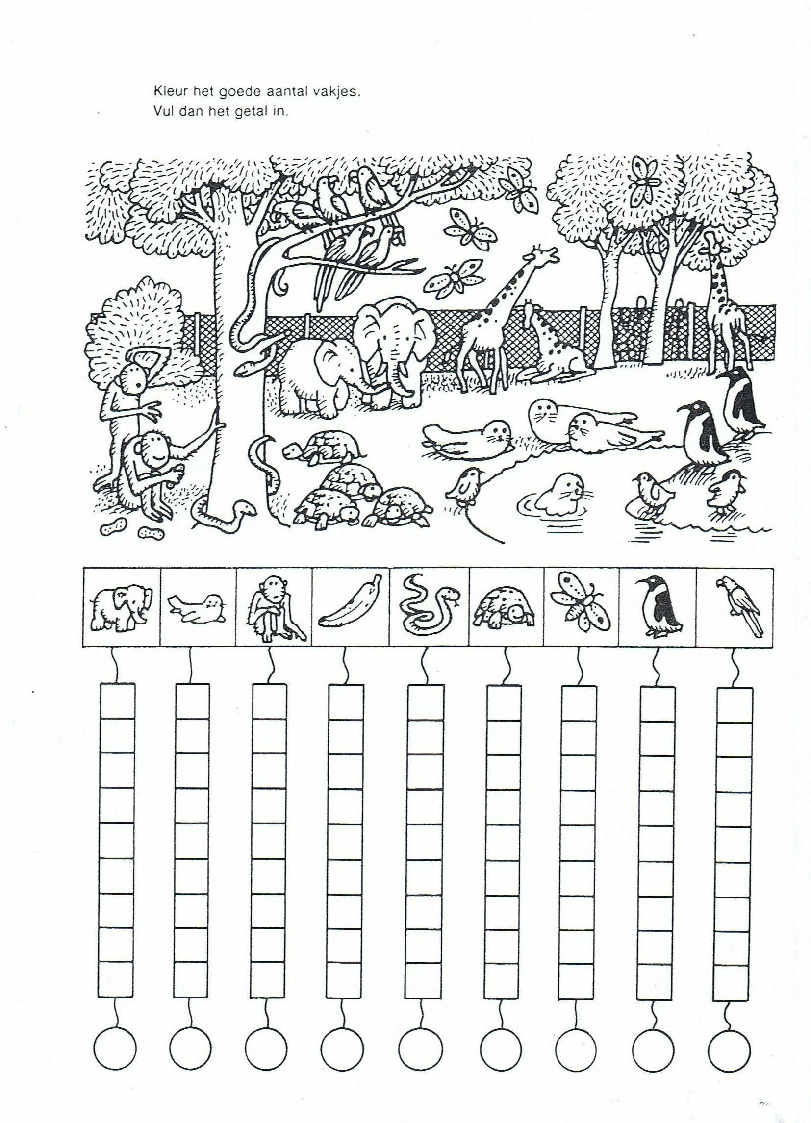 Food Chains and Webs Worksheet as Well as Web Worksheets Printable