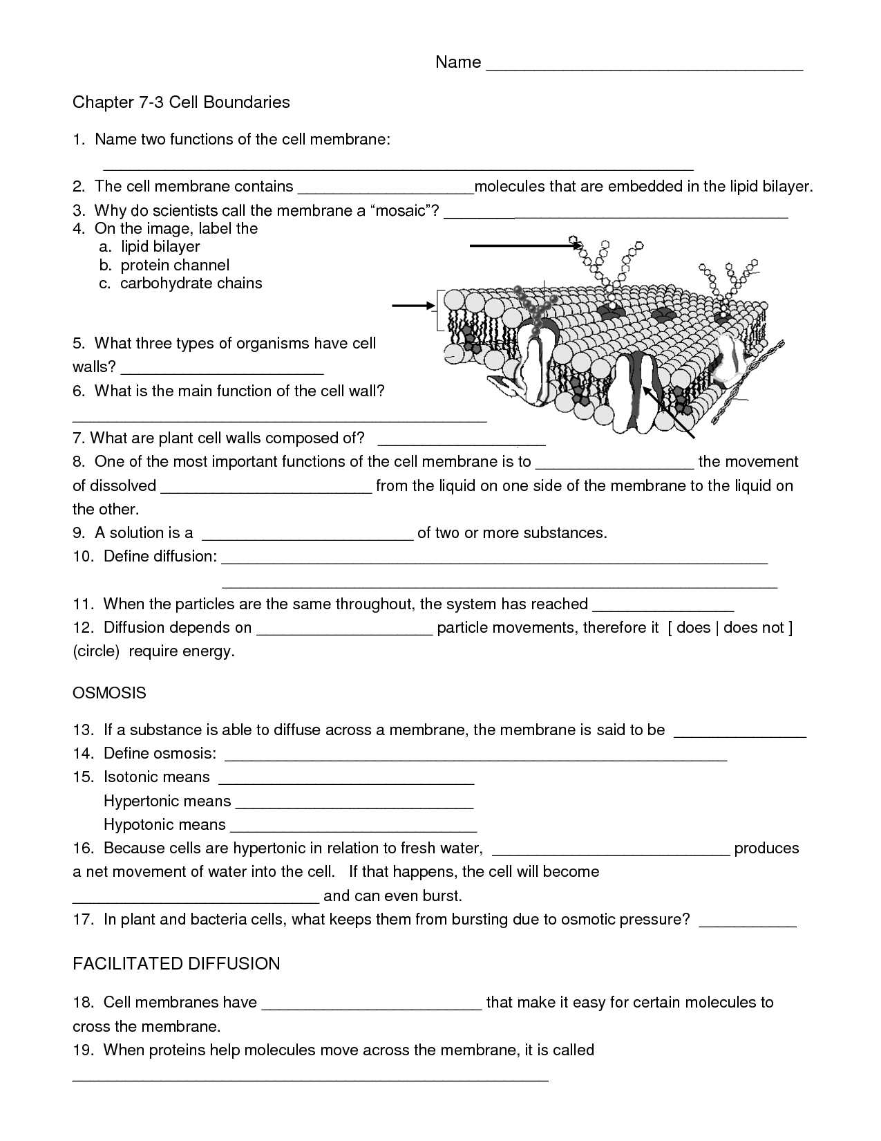 Parts Of A Flower Worksheet and Free Worksheets Library Download and Print Worksheets