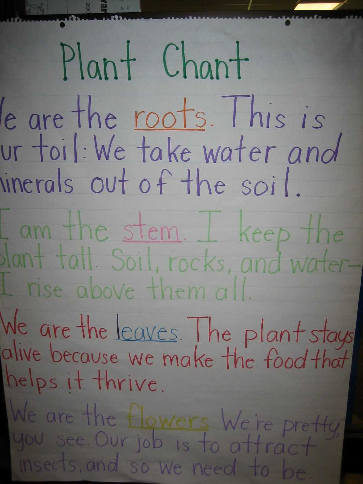 Parts Of A Flower Worksheet and Plant Chant to Remember the Parts Of A Plant