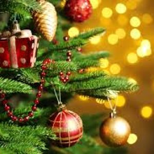 semestafakta-christmas