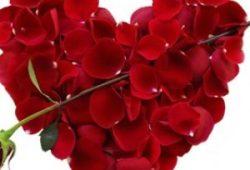 75 FAKTA MENARIK TENTANG HARI VALENTINE (Valentine's Day)
