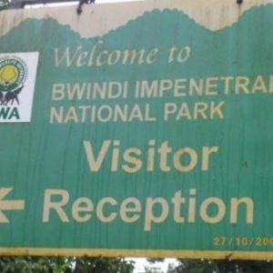 semestafakta-Bwindi and Mgahinga national park2