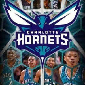 semestafakta-Charlotte Hornets basketball team