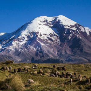 semestafakta-Mount Chimborazo