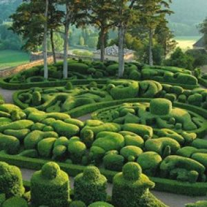 semestafakta-Sir Seewoosagur Ramgoolam Botanic Garden