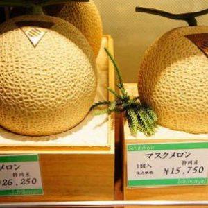 semestafakta-Japanese Yubari cantaloupes