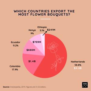 Flower Exports Data Visual