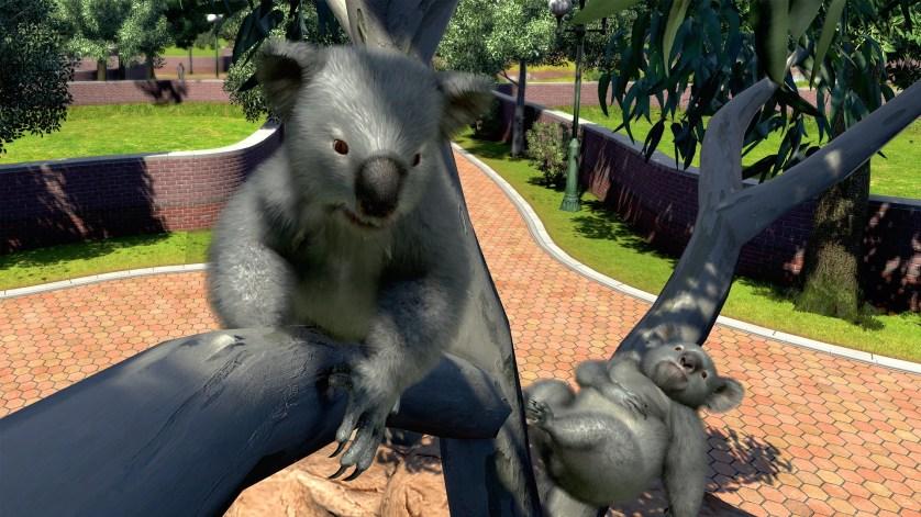 Zoo_Tycoon gamescom 2017 microsoft Koala