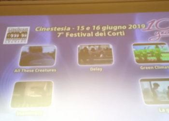 Cinestesia legnano 2019 (3)