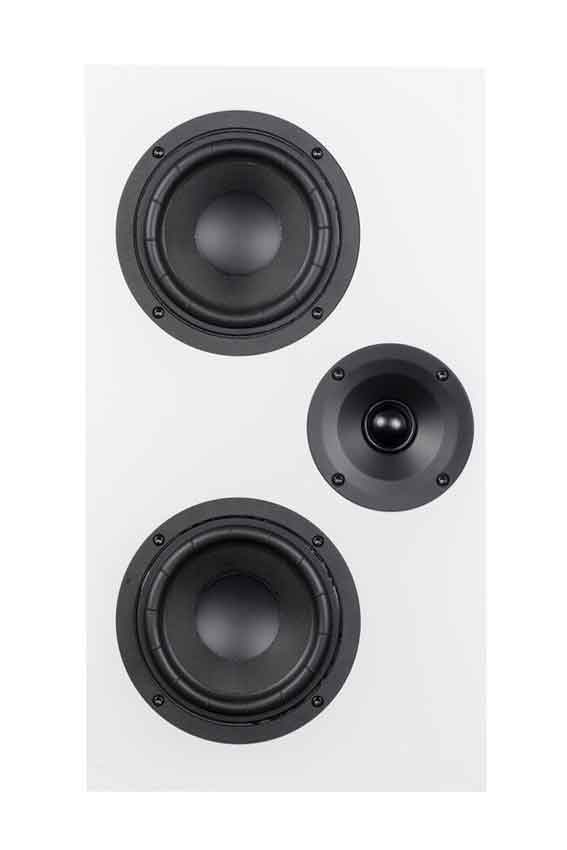 System Audio SA Legend 7 Silverback 06