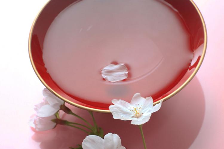 La lingua giapponese ha più di 70 parole dedicate ai fiori di ciliegio