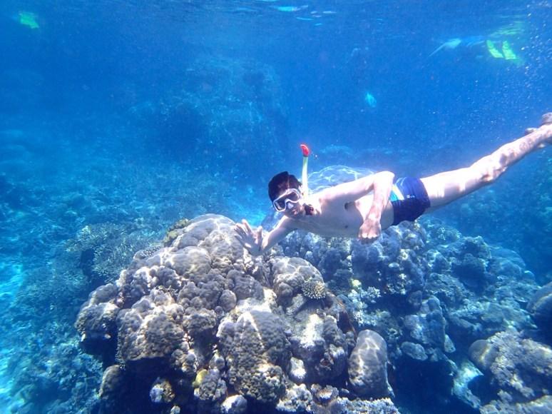 Snorkel en Great Barrier Reef Australia