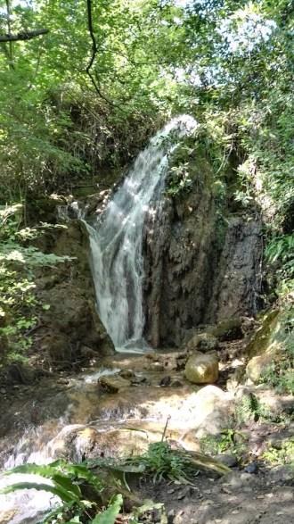 Gorg de la Plana, cascada 1