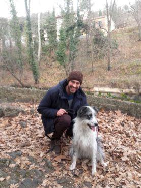 viajar con perro - bowie the dog 05