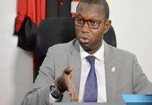 Utilisation de l'artemisia : Le comité scientifique du Pr Daouda Ndiaye vient de donner sa réponse !