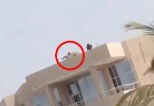 Manifestations au Sénégal: Un sniper aperçu dans un toit avec son arme, prêt à tirer (Vidéo)