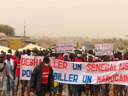 jhhhhhhhhhhhhhhhhhhh - Senenews - Actualité au Sénégal, Politique, Économie, Sport