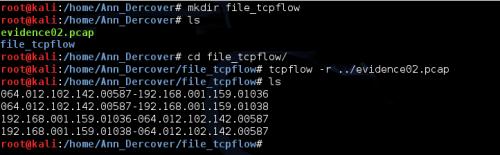 2 - file tcpflow