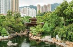 Oasis in the Heart of Hong Kong