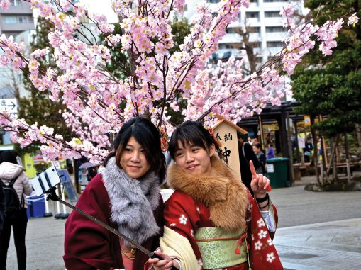 The Asakusa Shrine in Tokyo is a popular destination for both tourists and school graduation selfies!